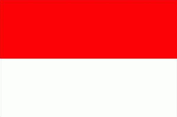 indonesian translator
