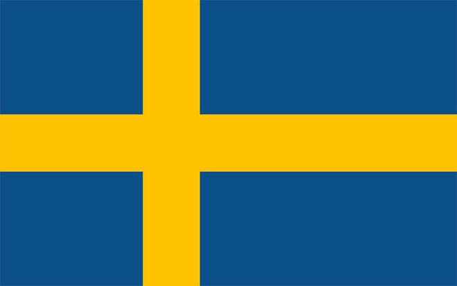 Swedish translator