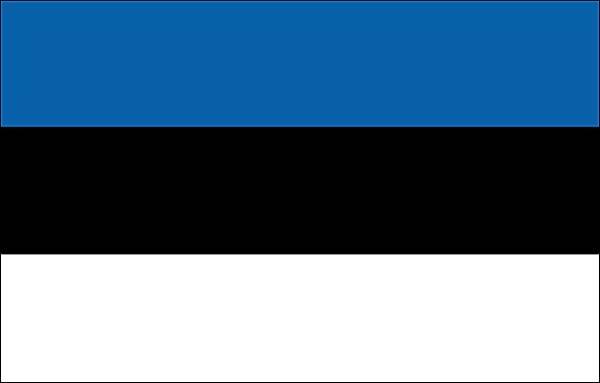 Estonian translator