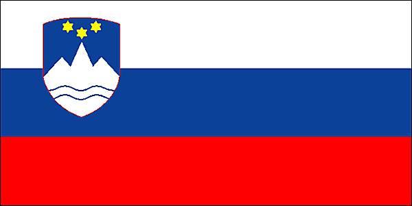Slovene translator