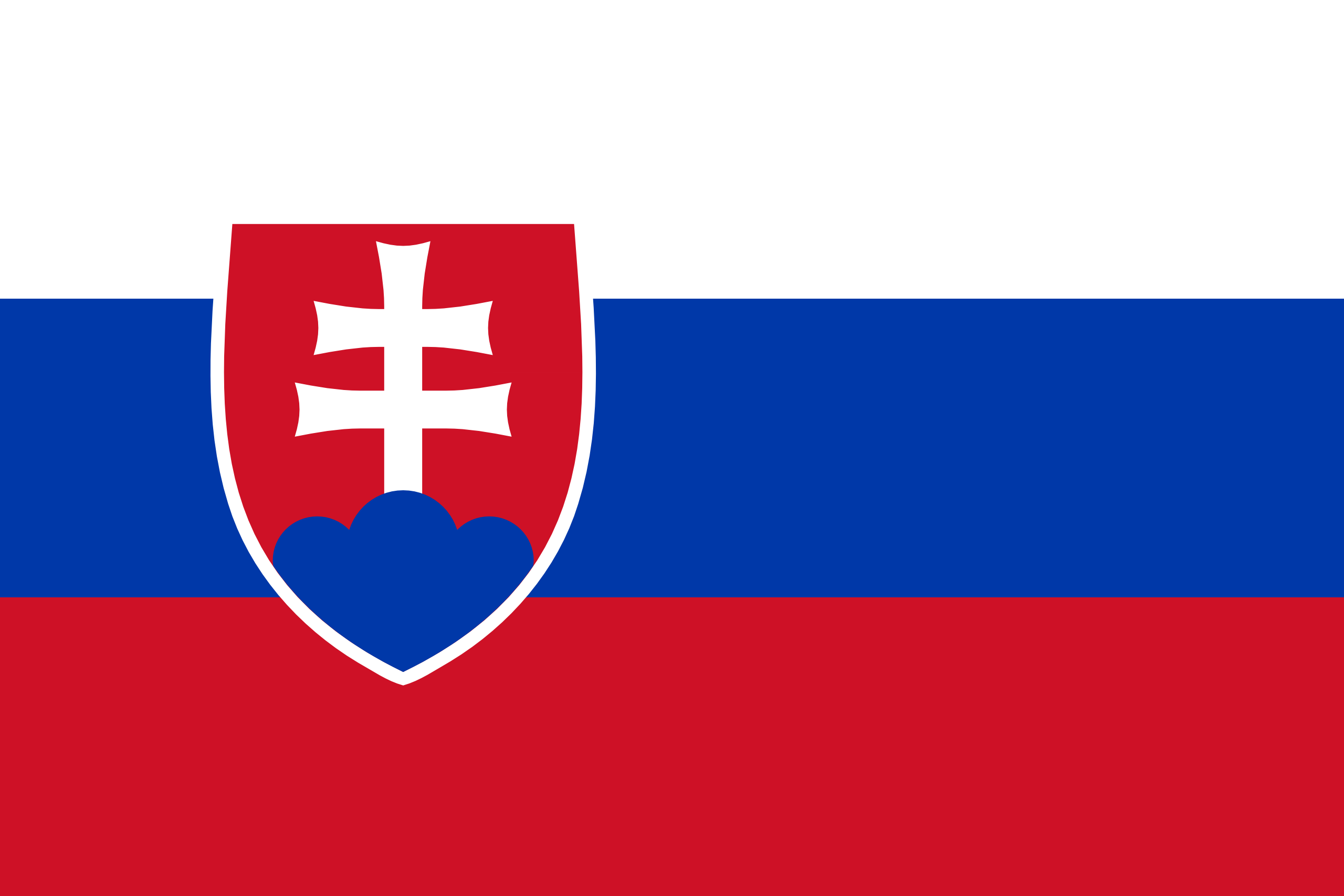 Slovak translator